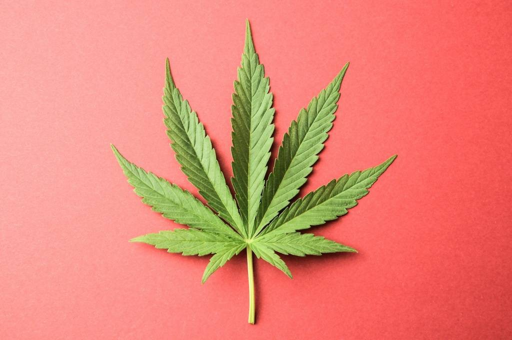 марихуаны в моче
