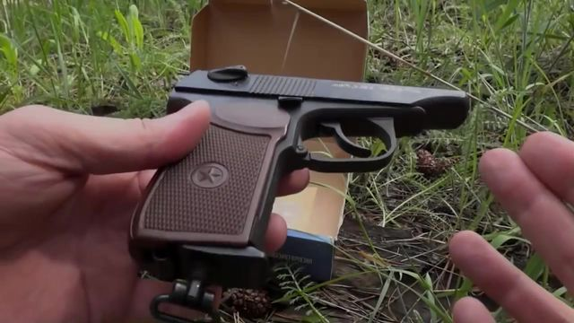 убить из пневматического пистолета